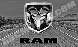 silver_ram_bw_texas