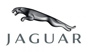 Jaguar Video in Motion